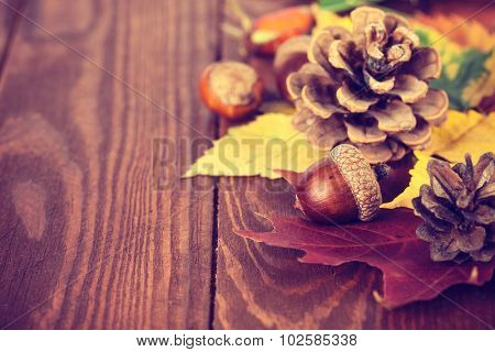 Autumnal still life with acorn pinecone and yellow leaves on wooden board. Illustration