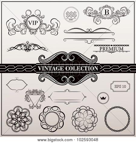 Vintage set decor elements for menu. Elegance old hand drawing set. Outline ornate swirl leaves, lab
