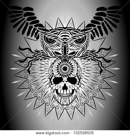 Human Skull And Owl