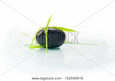 Stone In Green Grass Isolated
