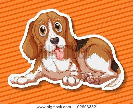 Little puppy sitting on orange background illustration