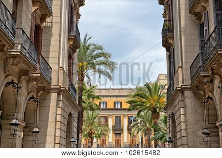Low Angle View of Historical Buildings and Palm Trees Inside Placa Reial, a Popular Tourist Destination in Barcelona, Spain