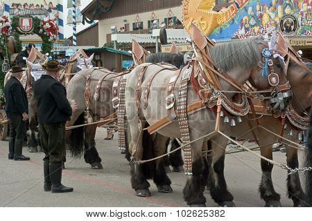 Spatenbrau Beer Carriage With Horses