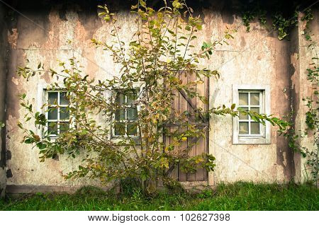 Wall Of The Medieval Abandoned House