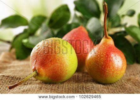 Fresh pears on sackcloth, closeup