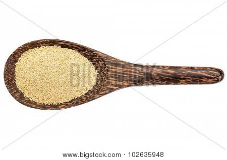 gluten free amaranth grain on a wooden spoon isolated on white