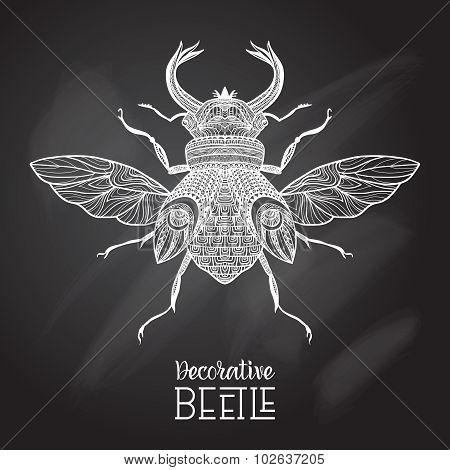 Chalkboard Beetle Decorative