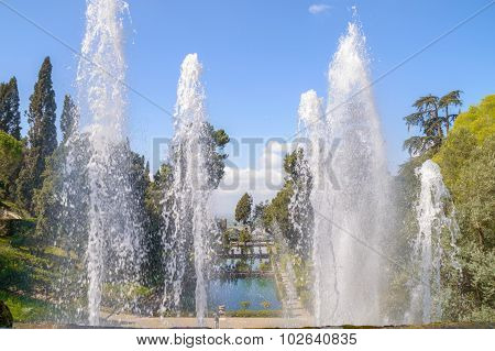Fountain Splashes In A Decorative Garden With A Pond