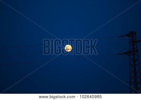 Birds On A Power Line, Profiled Against Sky And Rising Full Moon