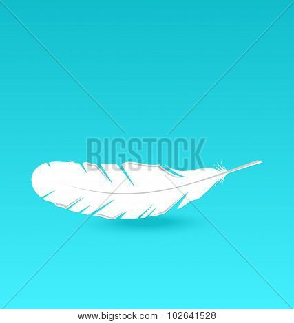 White feather falling