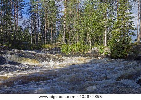 River Rapids. Karelia, Russia.