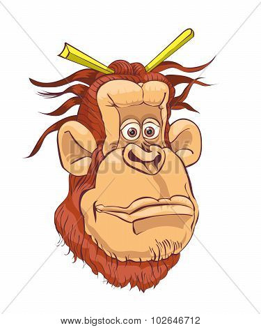 Illustration of an orangutan on a white background