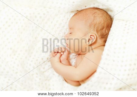 Baby Sleep, New Born Kid Asleep, Newborn One Month Boy Sleeping on White