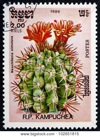 Postage Stamp Cambodia 1986 Neochilenia Simulans, Cactus
