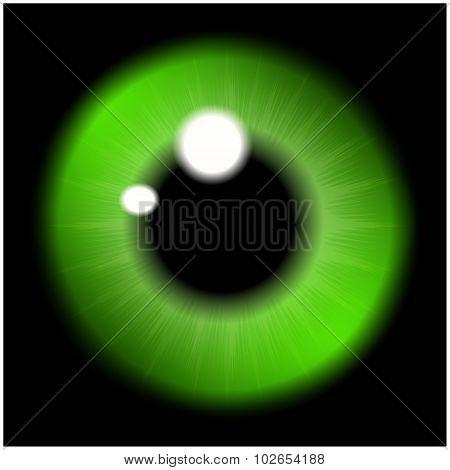 Image Of Green   Pupil Of The Eye, Eye Ball, Iris Eye. Realistic Vector Illustration Isolated On Bla