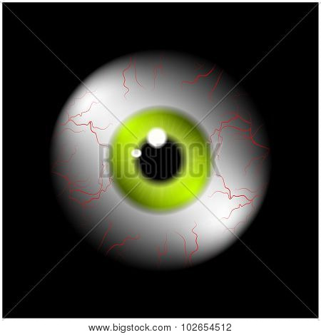 Image Of Realistic Human Eye Ball With Yellow,green  Pupil, Iris. Vector Illustration Isolated On Bl