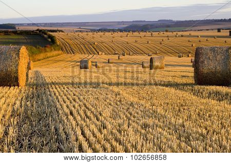 Straw Bales at Dawn