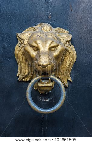 Lion Head Doorknocker On A Metal Door