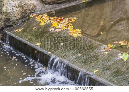 Small Waterfall And Autumn Leaves