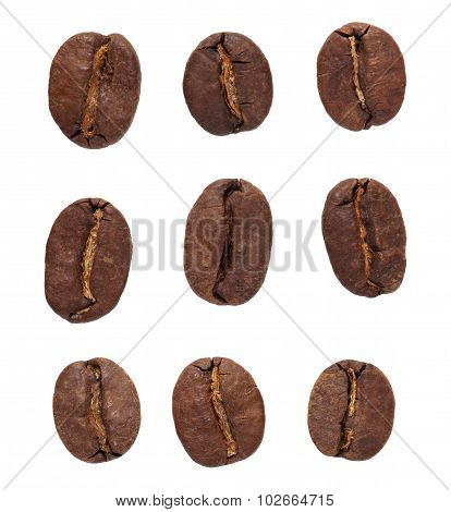 Coffe Beans Set