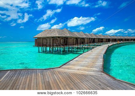 beach in Maldives with few palm trees and blue lagoon