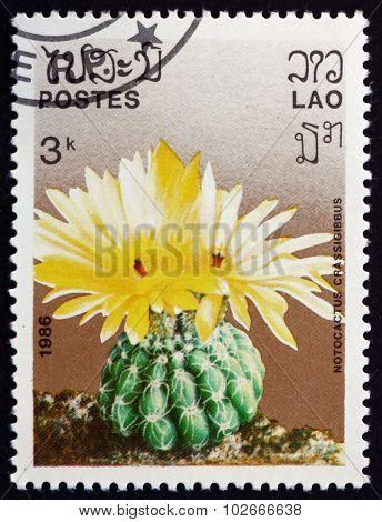 Postage Stamp Laos 1986 Notocactus Crassigibbus, Cactus