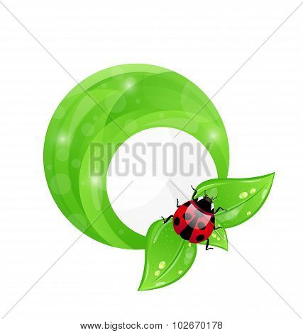 Green round frame with leaf elements and ladybug, eco friendly b