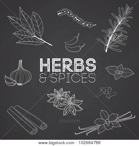 Herbs and spices on black background