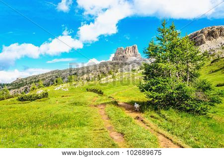 Hiking path to Monte Averau in Dolomites, Italy