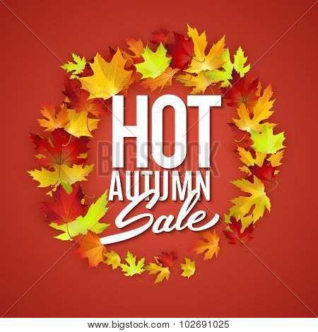Hot Autumn Sale Advertisement Banner, Poster, Retail, Discount, Vector Illustration