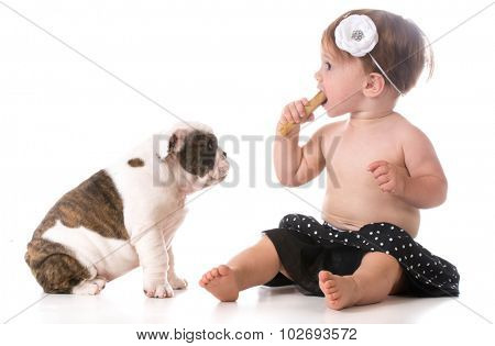 child chewing on dog bone while puppy watches