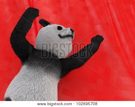 Terrestrial Animal Panda Bear Native Central China  Recognized By Large Distinctive Black Patches Ar