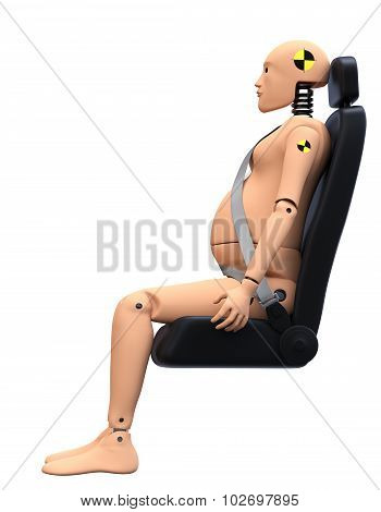 Crash Test Dummy Female Pregnant