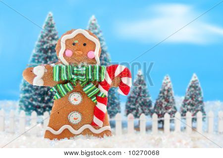 Christmas Trees And Gingerbread Man