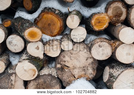 The Closeup Of  Stack Of The Snowy  Firewood