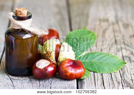 Chestnut extract in the bottle closeup