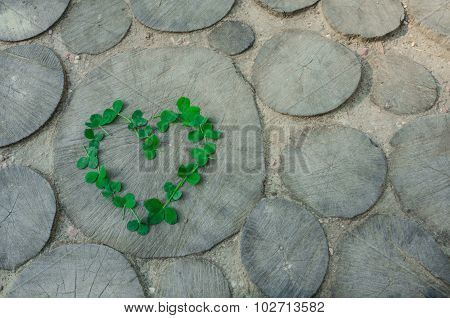 A Heart From Leaf Clover