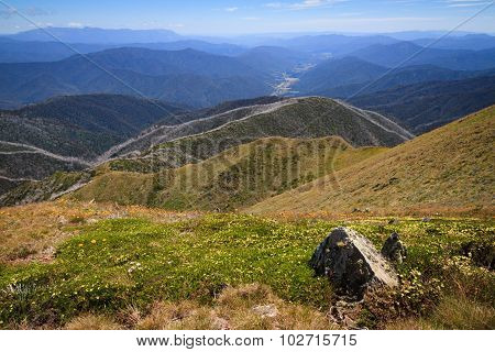 View From Mt Feathertop