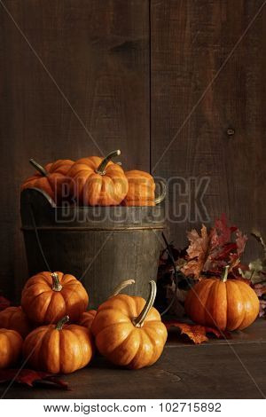 Miniature pumpkins on wooden table with leaves