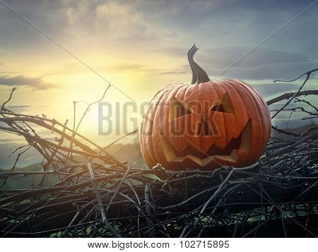 Funny face pumpkin sitting on grapevine and fence