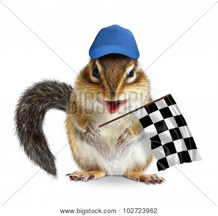 Funny Chipmunk With Racing Flag Isolated On White