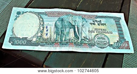 Nepalese banknote, one thousand rupees