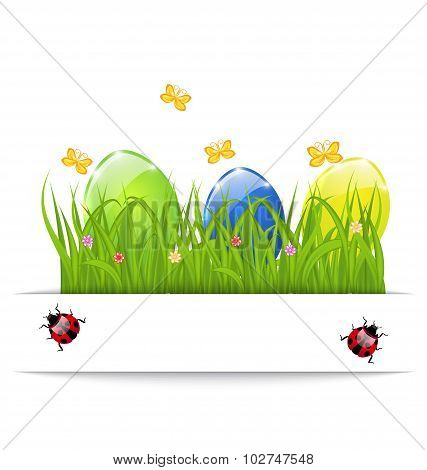 Easter colorful eggs in green grass with space for your text
