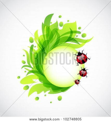 Eco floral transparent background with ladybugs