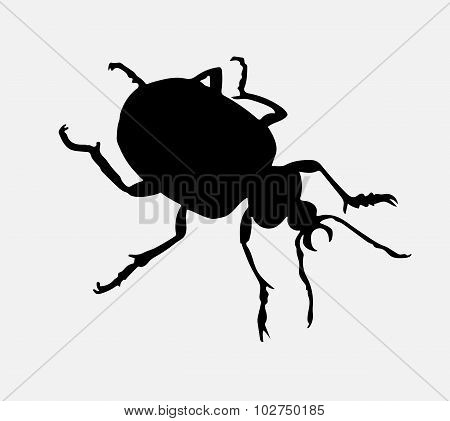 Bug's Silhouette.
