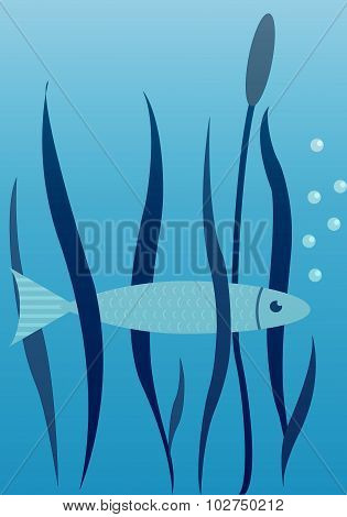 Vector Image Of Fish, Seaweed And Cane.