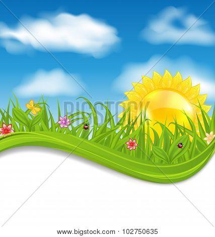 Summer card with sky, cloud, sun, grass, flower, butterfly, lady