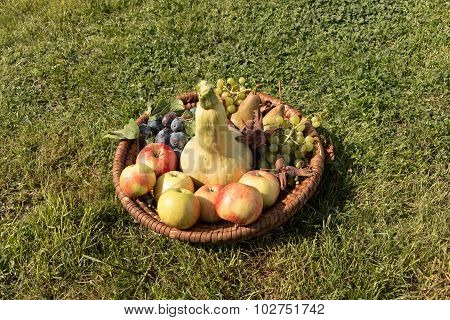 Wicker Tray With Fruit