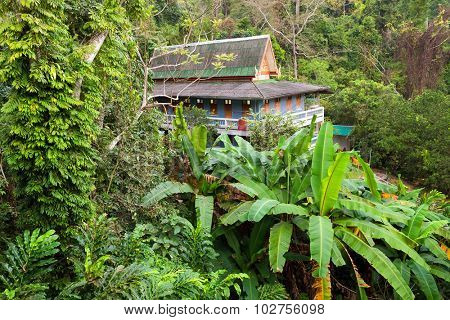 Buddhist home dormitory in jungle, temple of Wat Tham Pha Plong, Chiang Dao, Thailand