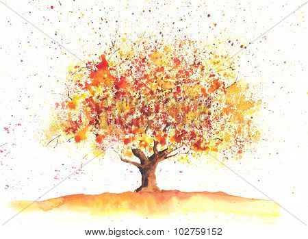 Watercolor Autumn Tree